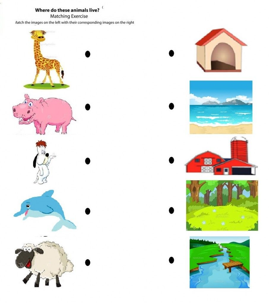 Free Printable Matching Animals To Their Home Worksheet 2 Crafts And W Kindergarten Worksheets Kindergarten Worksheets Printable Animal Activities For Kids [ 1024 x 913 Pixel ]