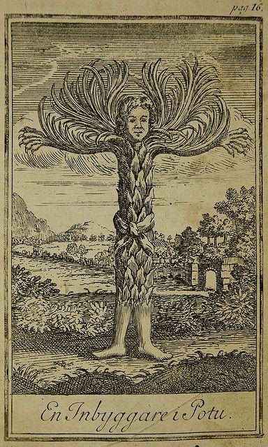 Ludvig Holberg, Baron of Holberg (December 3, 1684 – January 28, 1754): Niels Klim's Underground Travels (originally published in Latin as Nicolai Klimii Iter Subterraneum 1741) - En Inbyggare i Potu [1767 edition]