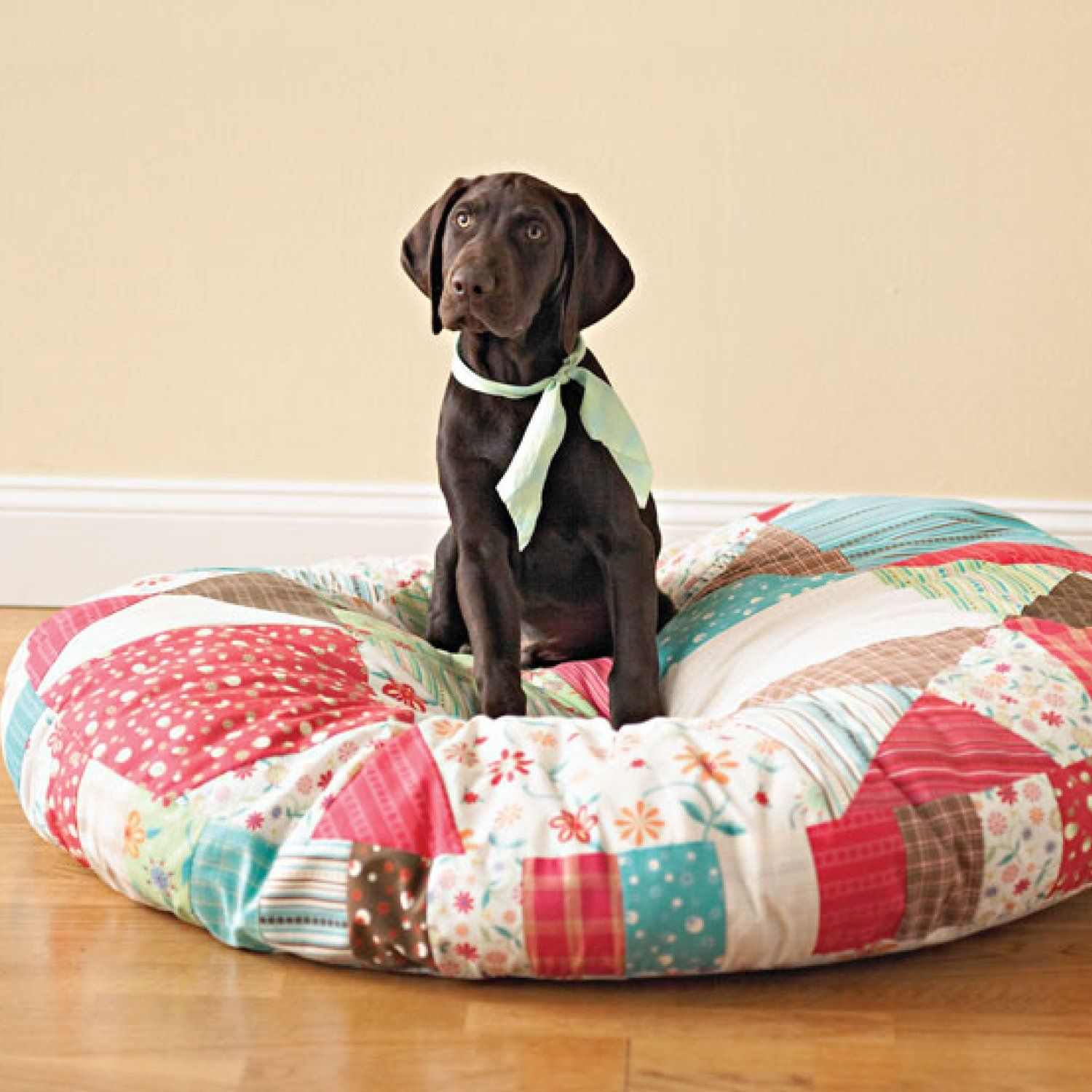 Creature Comfort Animal pillows, Quilts, Dog bed