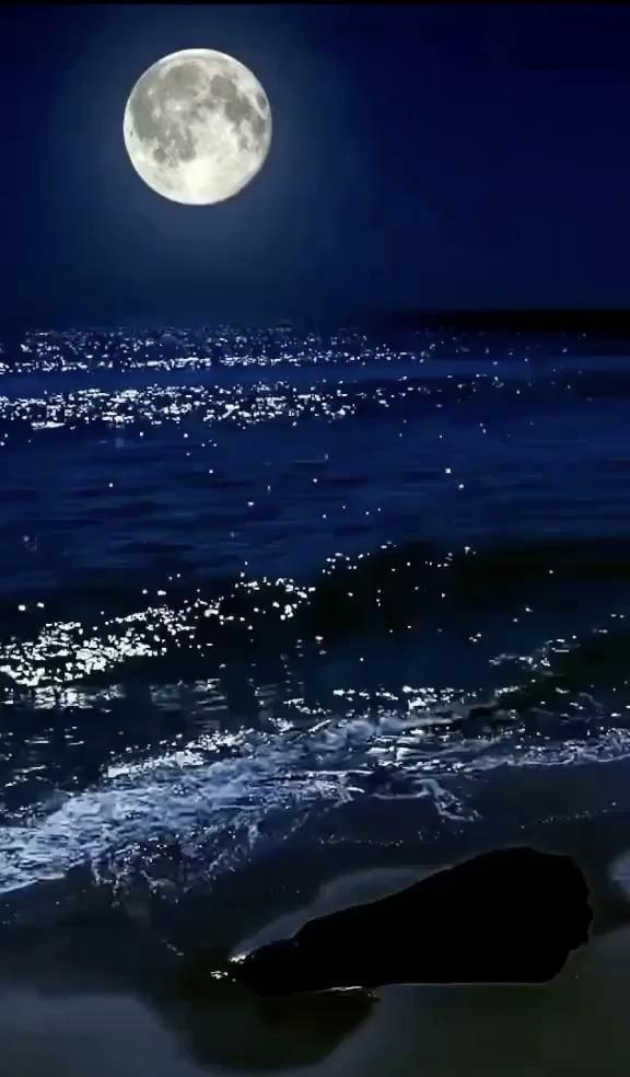 WALLPAPER ANIMADO [Video]   Ocean at night, Beautiful nature pictures, Night sea