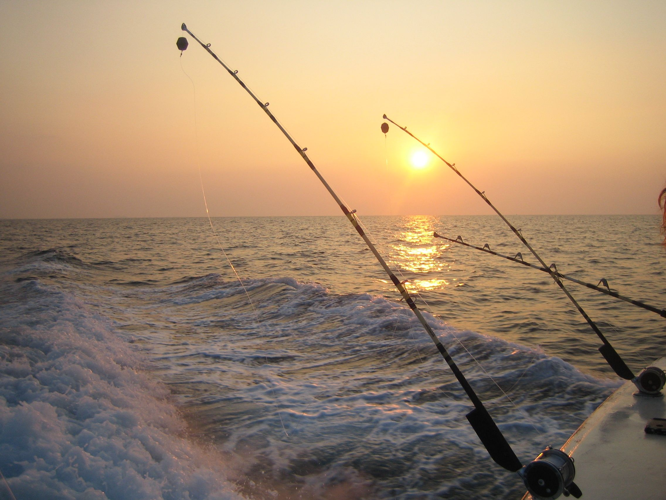 Deep sea fishing destin fl places i 39 ve lived or for Fishing destin fl