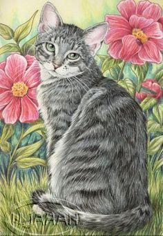 Схема вышивки «кошка» - Схемы вышивки - Nat6 - Авторы ...