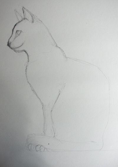 Comment Dessiner Facilement Un Chat Assis Art Dessin Animalier
