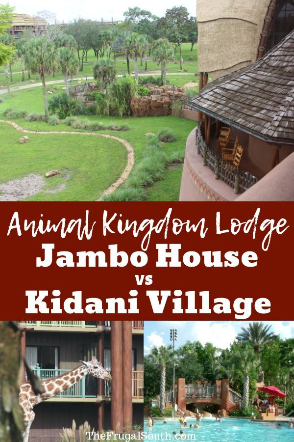 Jambo House vs. Kidani Village at Disney's Animal Kingdom Lodge #animalkingdom