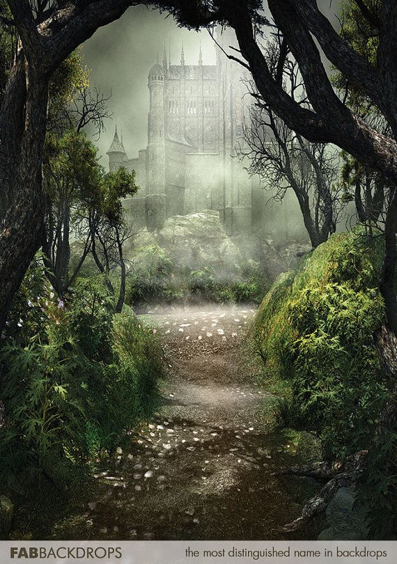 Foggy Forest Path To Castle Backdrop Photo Backdrop For