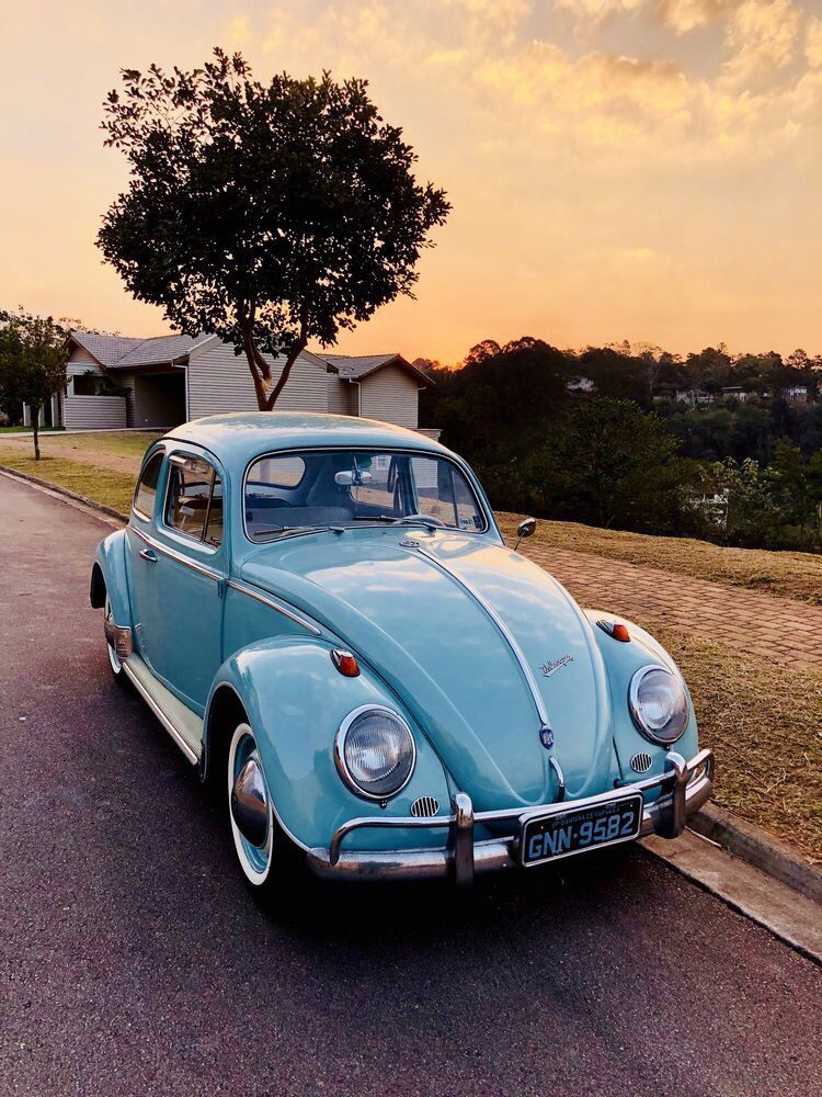 Blue Beetle Cars : beetle, Images, Volkswagen, Beetle, Vintage,, Volkswagen,