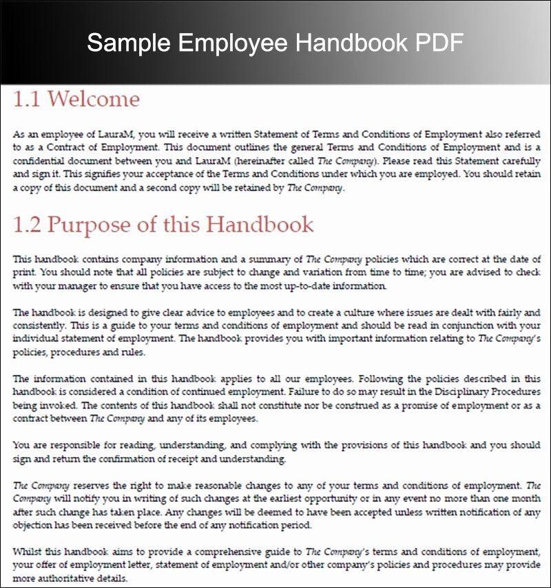 Employee Handbook Template Word Gildenlow in 2020