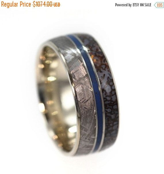 Unique Mens Wedding Band, Meteorite Ring With Dinosaur Bone And A Blue  Enamel Pinstripe,