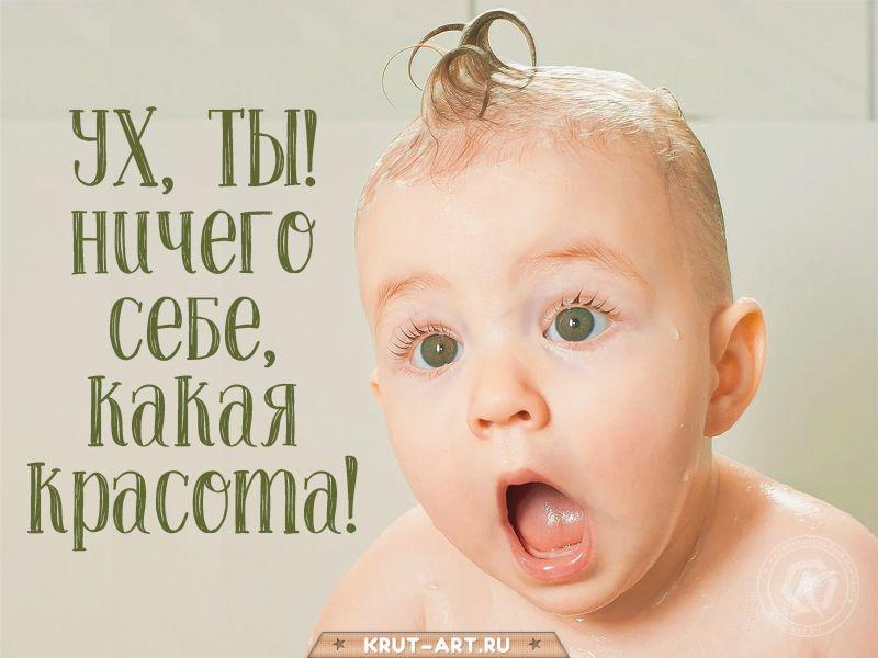 Милая картинка с удивленным малышом для девушки, женщины, ух, ты, ничего  себе, какая красота. Открытка — комплимент на каждый день | Смешно,  Красотки, Открытки