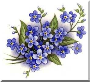I Shall Wear Purple With Pleasant Regards To Jenny Joseph