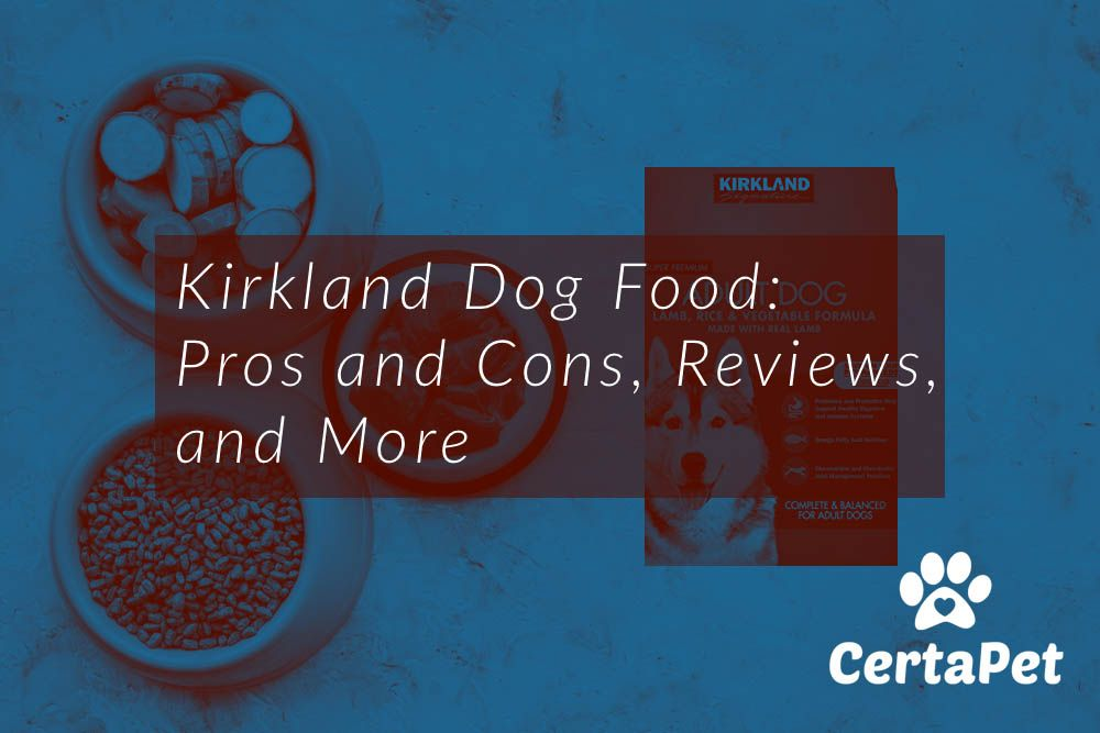 Kirkland dog food pros and cons reviews and more