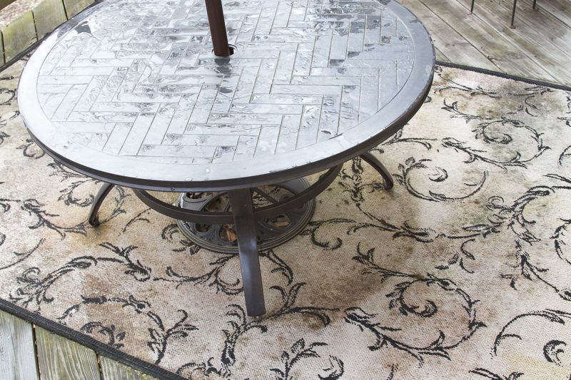 How To Clean Mold And Mildew From An Outdoor Rug Outdoor Rugs Rugs Mold Remover