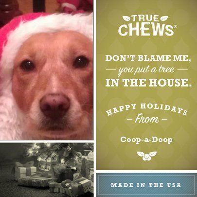 Coop-a-Doop just make a True Chews Holiday eCard.