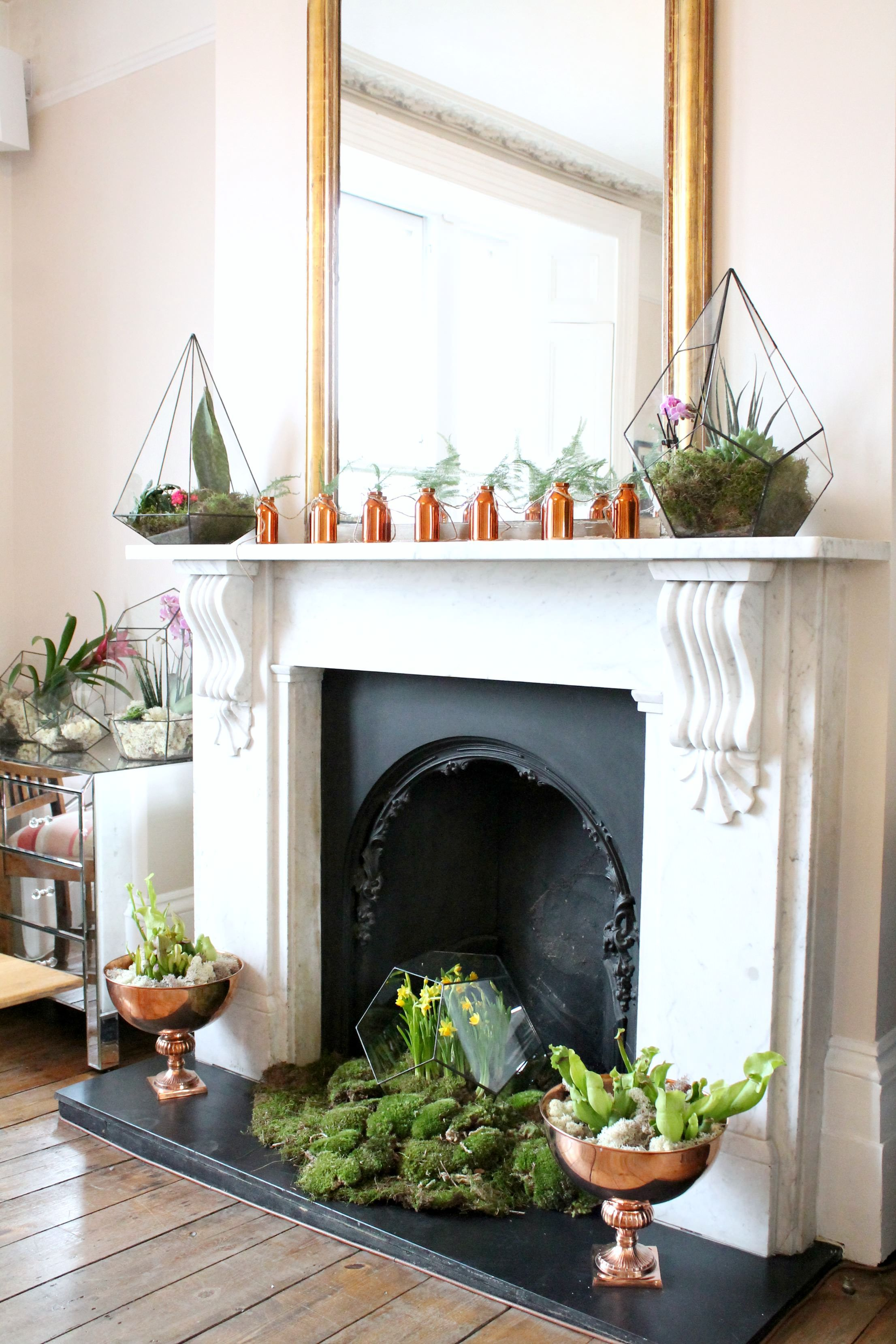Fireplace is transformed into an oasis of botanics ...