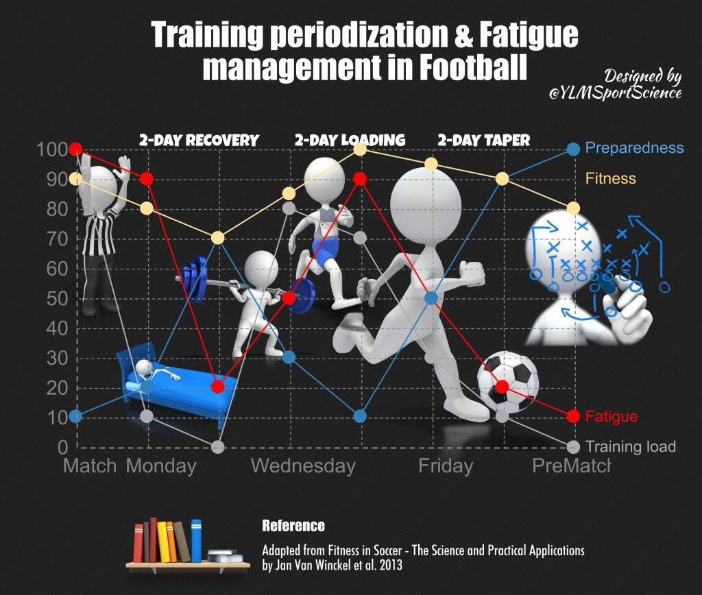 Pin by Kevin Hodgson on Fitness Science infographics