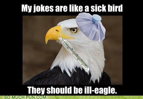 Ill Eagle Jokes Quirky Quotes Funny Pictures