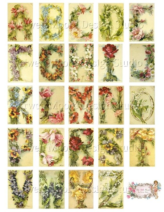 catherine klein did an entire alphabet with flowers, some are on this board in larger pics.