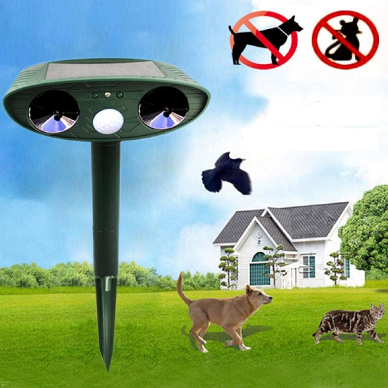 Get rid of dogs, cats, foxes, deer, raccoons, mice, skunks