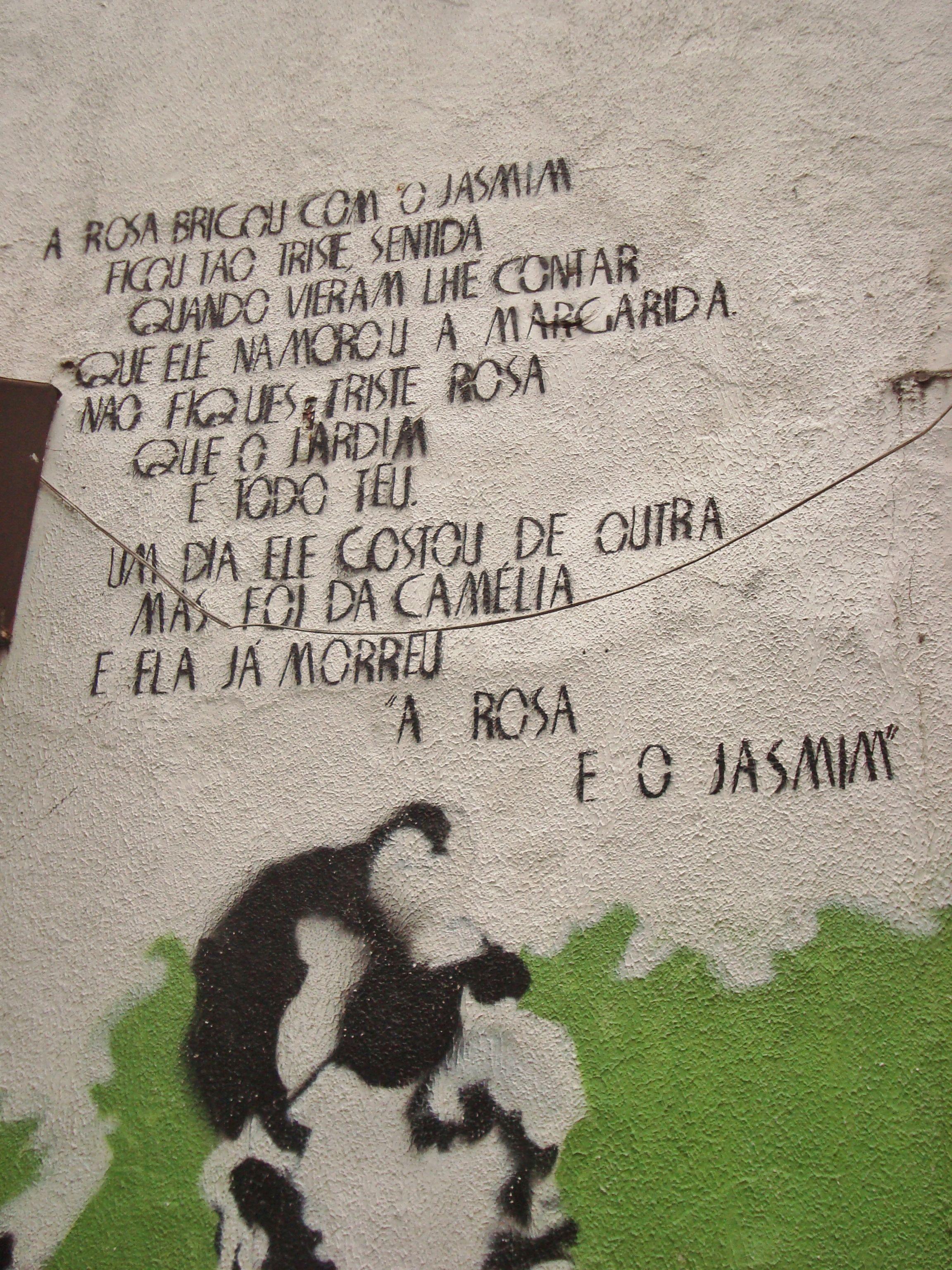 nas paredes  de Floripa, as mensagens da ilha da magia .by giandra