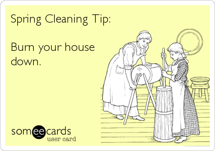 Get Organized  Spring Cleaning  Spring House And Humor