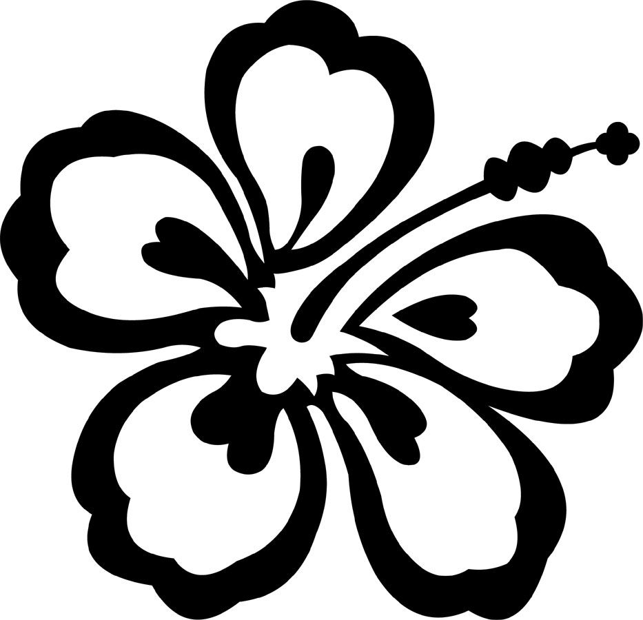 Image Result For Hibiscus Flower Outline Stencil Beach Ideas