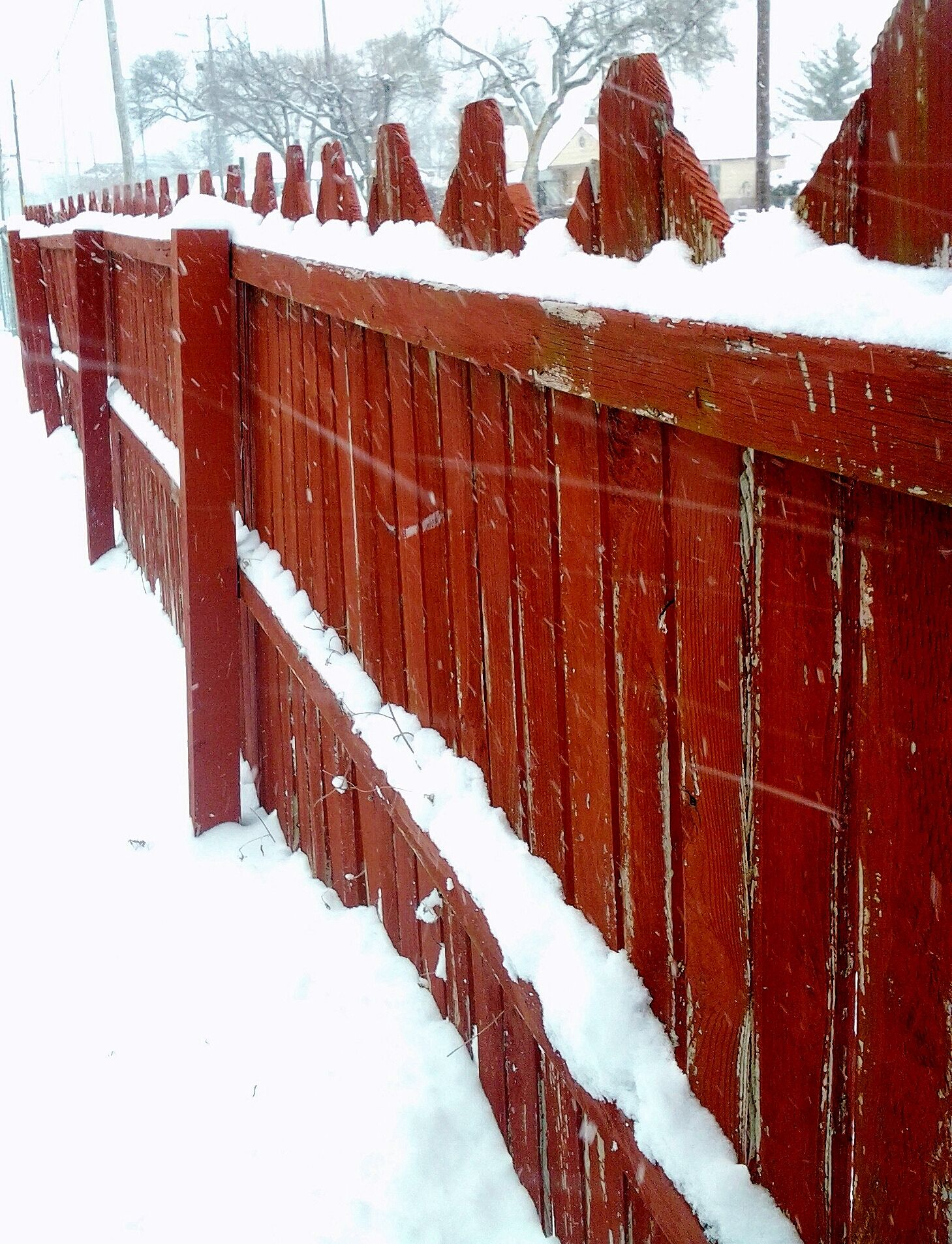 Red Picket Fences Winter Beautiful Studies Christmas Lights Nature Photography