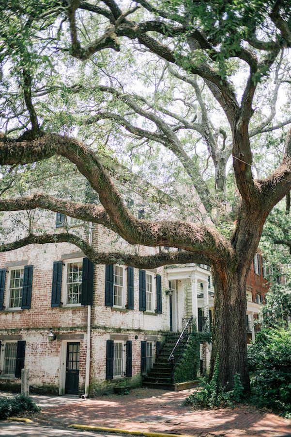 Better Homes And Gardens Savannah Ga