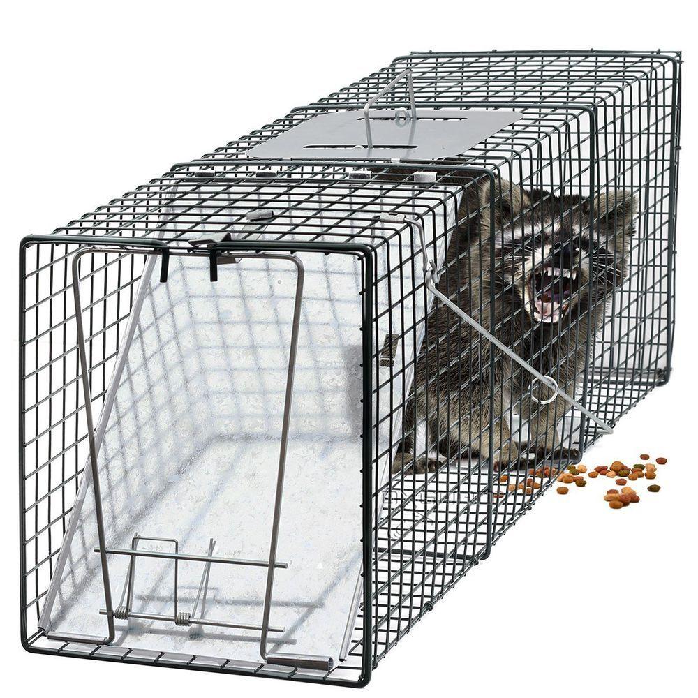 Cage Trap Raccoon Skunk Rabbits Stray Cat Squirrel Mole Gopher ...