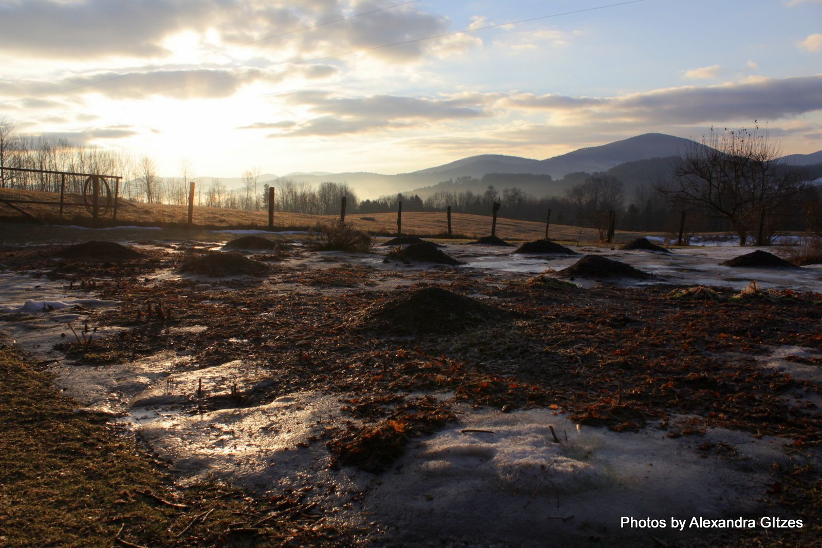 Blanchard Hill Sunrise, Peacham Vermont - Photos by Alexandra Gitzes