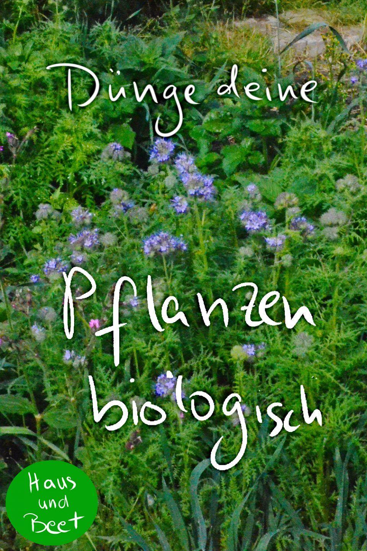 Pflanzen Dungen Mit Biologischen Hilfsmitteln Haus Und Beet Pflanzen Gartenarbeit Gemusegarten Anlegen
