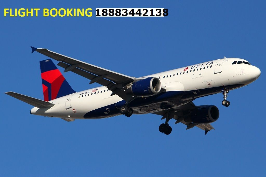 Number contact office airlines delta mumbai