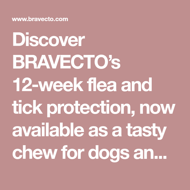 Discover BRAVECTO's 12week flea and tick protection, now