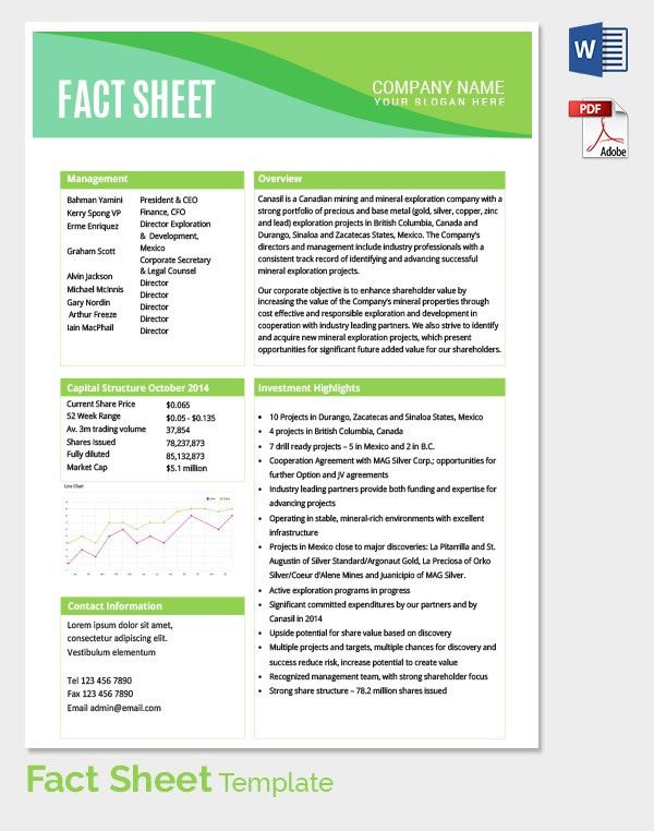 Fact Sheet Template Fact Sheet Template   Free Word Pdf