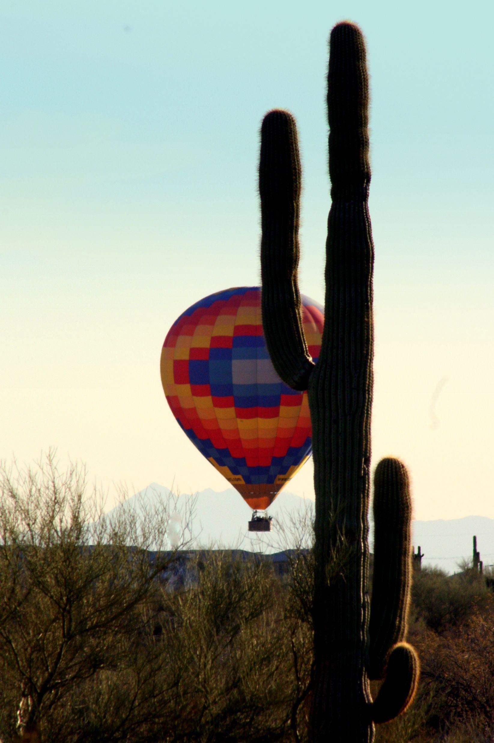 Family Hot Air Balloon Ride. Phoenix, Arizona a gift