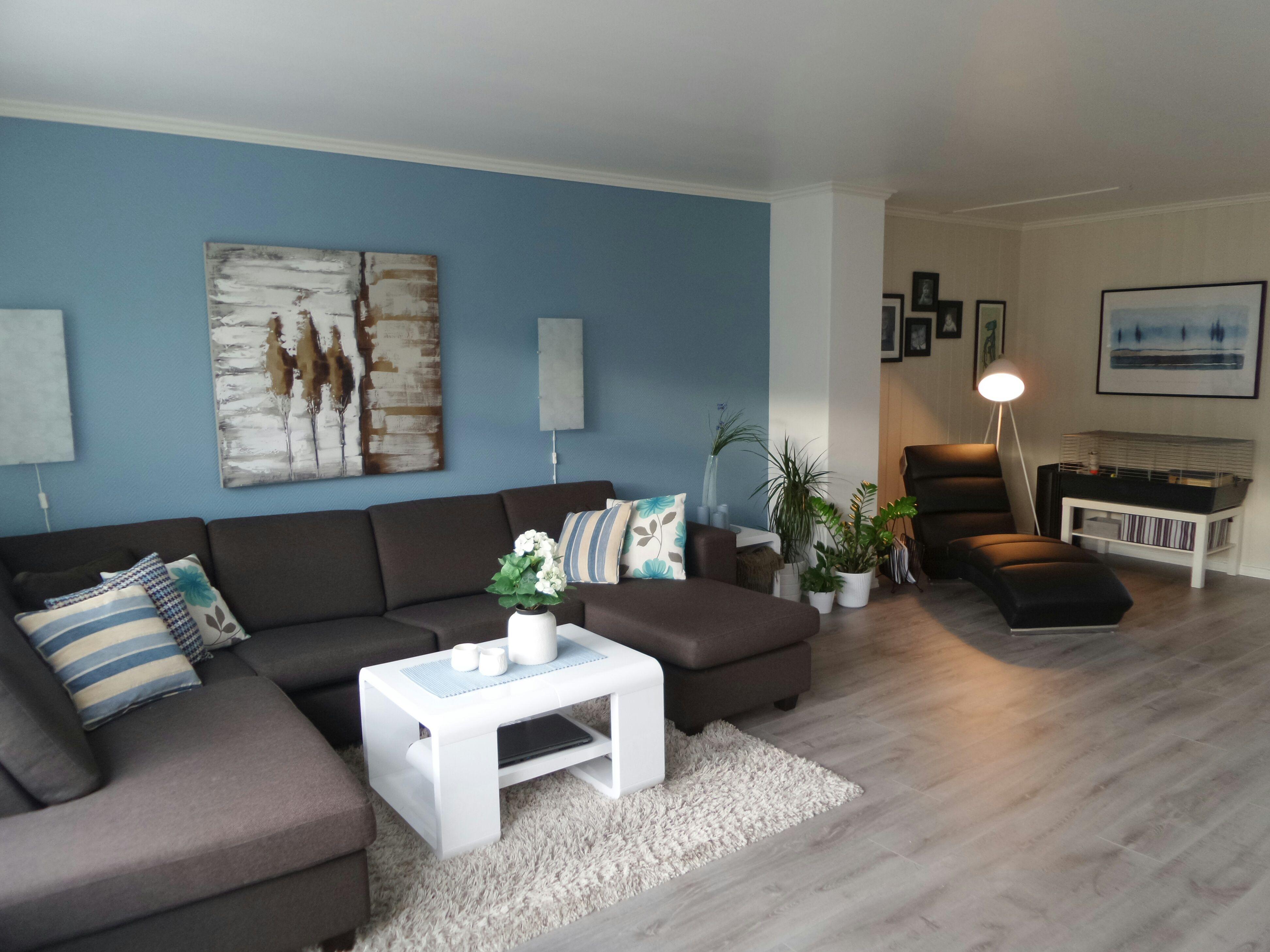 Livingroom. Blue Wall, Grey Flooring