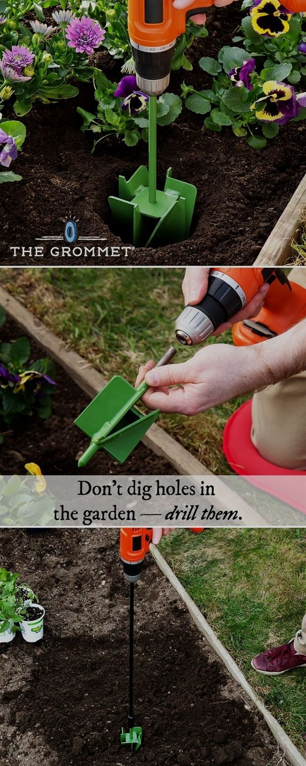 fd60a63ad240bc5919053fa3119dbc4e - Gardening All In One For Dummies Pdf