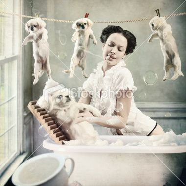 The Girl Who Washed The Dogs In Little Bath The Grain And Texture