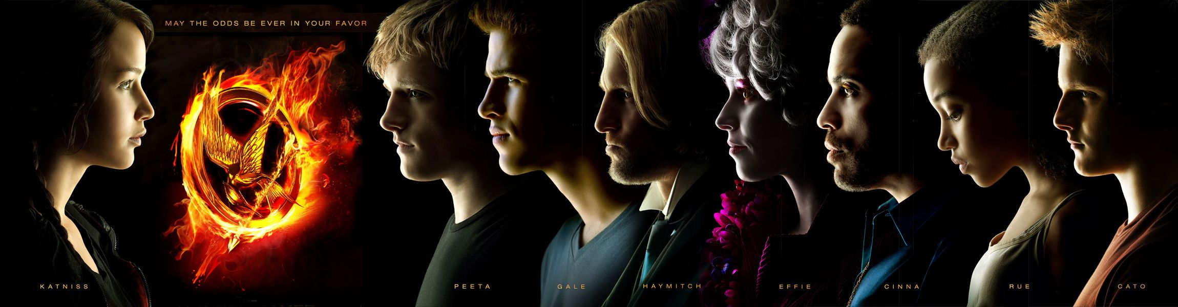 Pin By Becky Rivera On Hunger Games Hunger Games Poster Hunger Games Characters Hunger Games 2012
