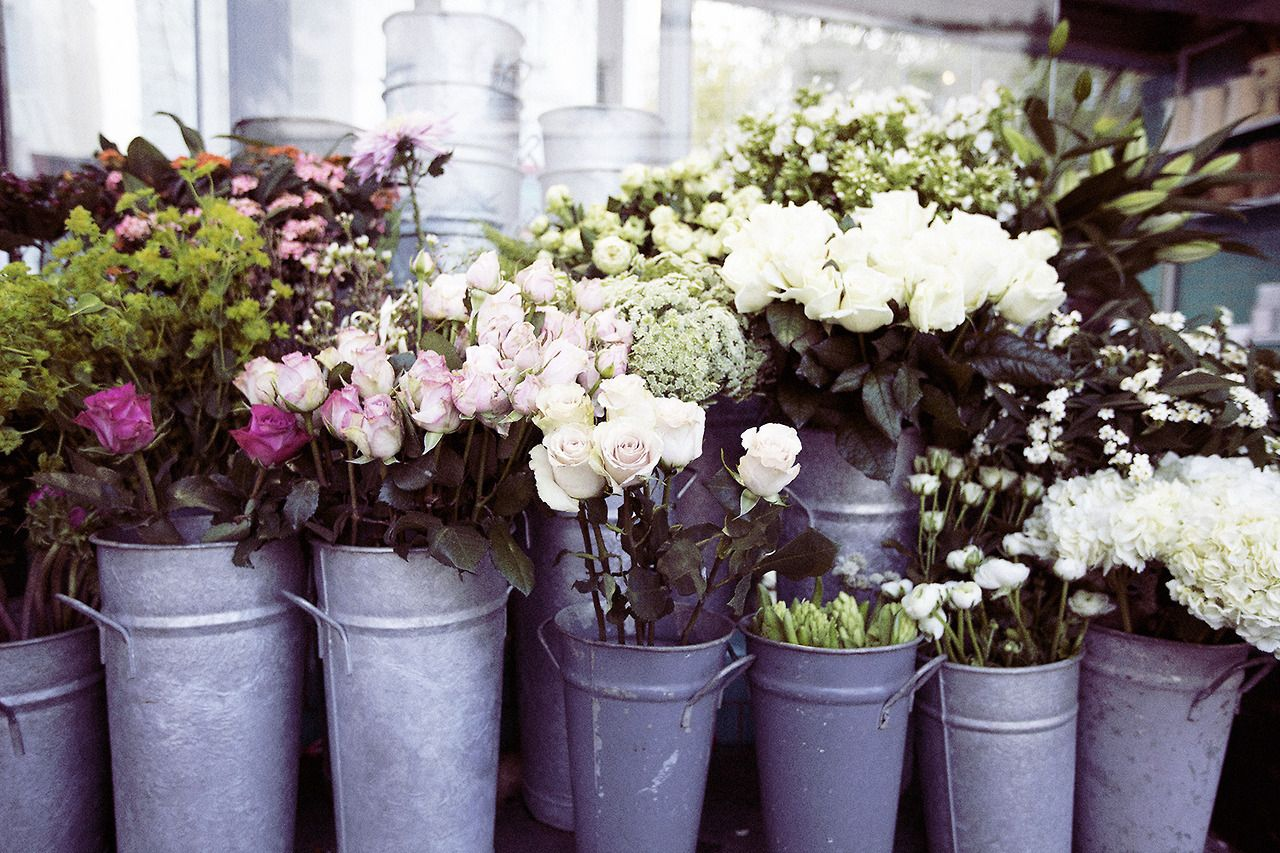 Flower Market Early Morning Notting Hill P H O T O G R A P H Y