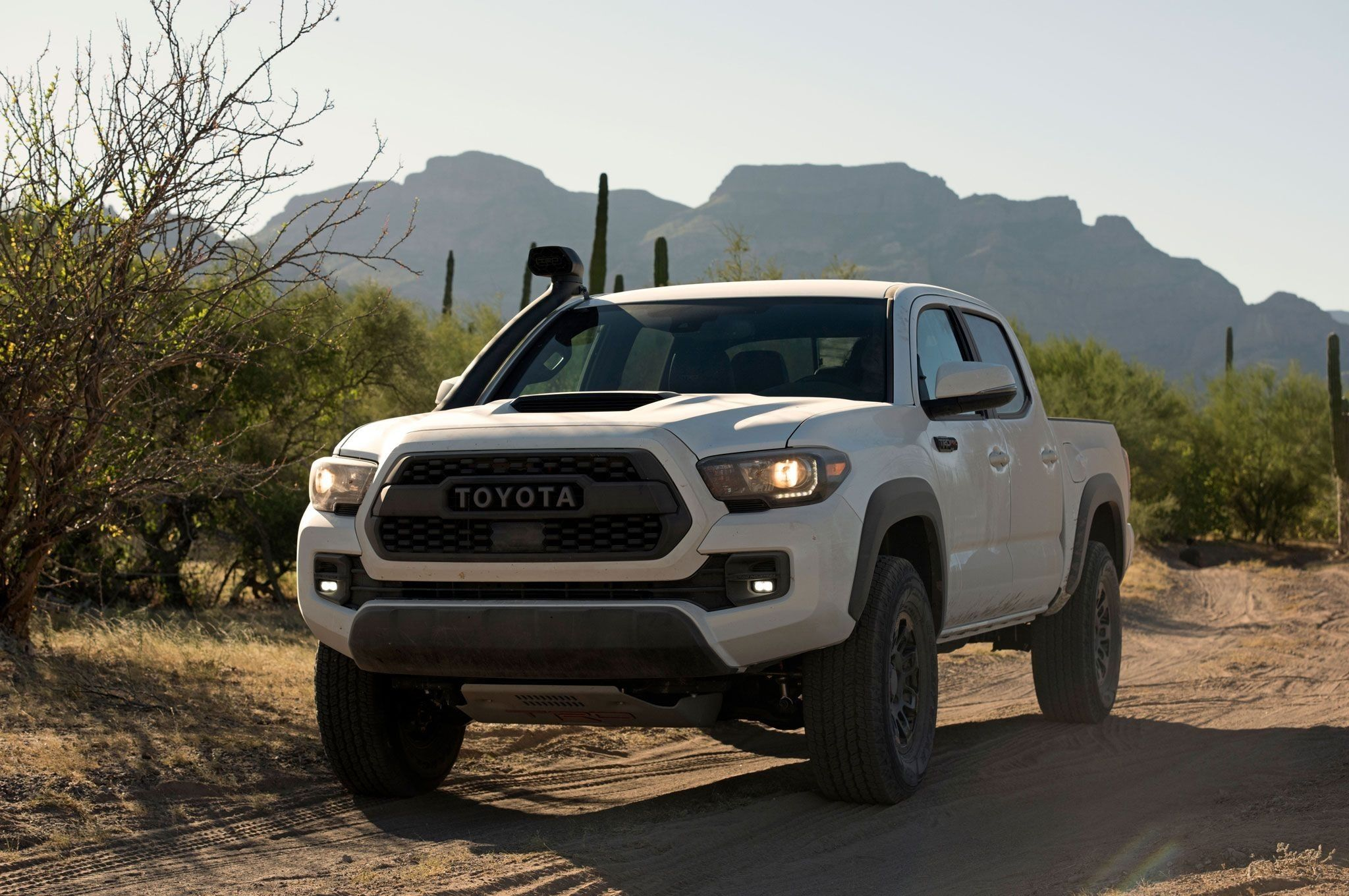 2019 Toyota Tacoma Diesel >> 2019 Toyota Tacoma Diesel Exterior And Interior Review Car