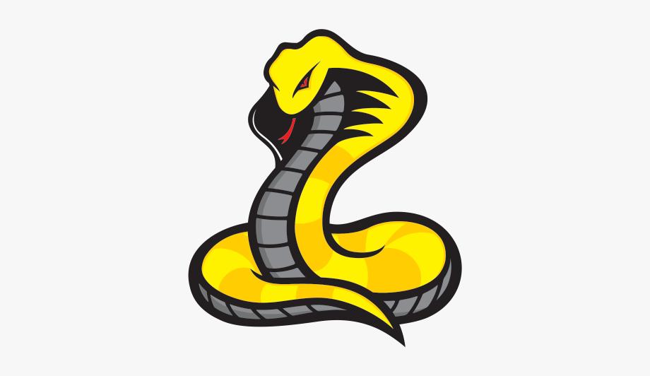 Cobras Sports Logo Google Search Sports Logo Cobra Character