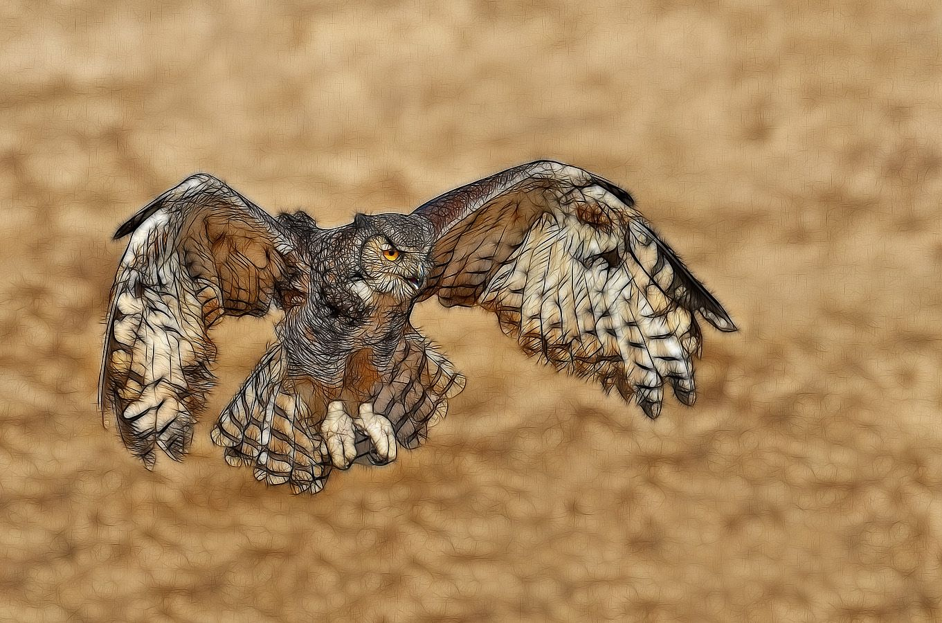 Great Horned Owl Drawing Flying | www.imgkid.com - The ...
