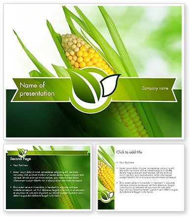 HttpWwwPoweredtemplateComIndexHtml Corn On The Cob