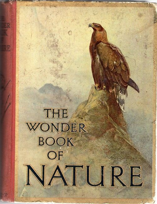 Harry Golding: The Wonder Book of Nature for Boys and Girls, 1920s