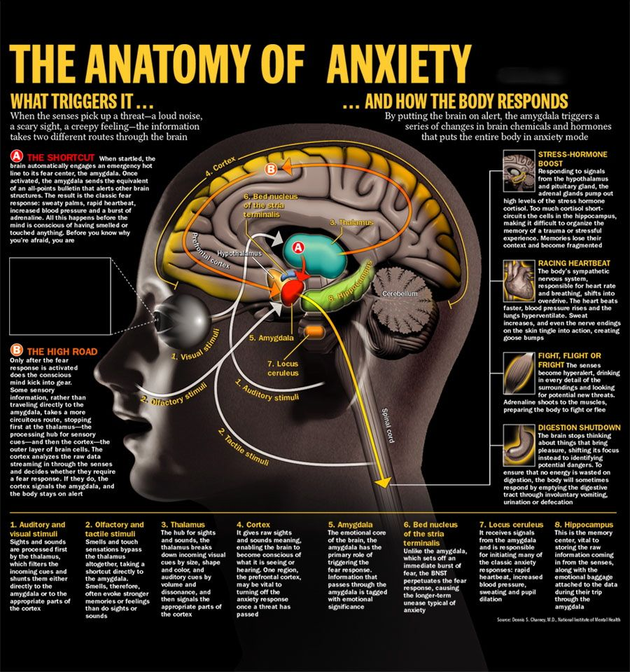 There is a method of anxiety management that is considered the most ...