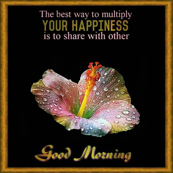 Powerful Sunday Msg For Him: Morning Quotes, Good Morning