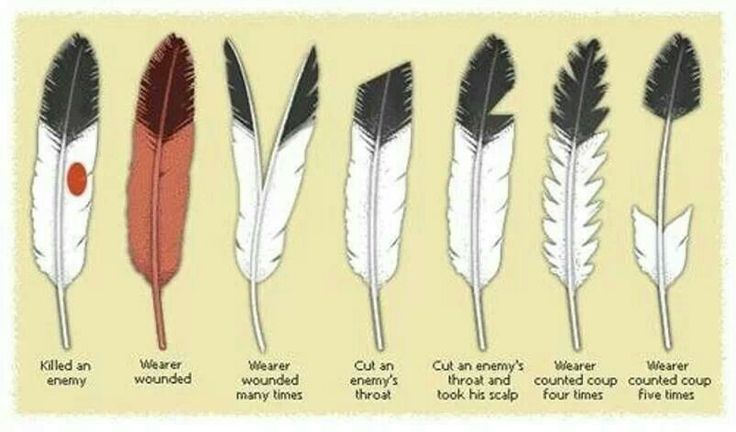 Native American Eagle Feather Braves Eagle Feather Achievments