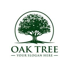 Oak Tree Logo Photos Royalty Free Images Graphics Vectors Videos Adobe Stock Tree Logos Oak Tree Tree