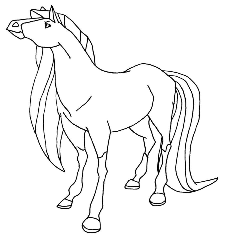 Chili Bw Horse Coloring Pages Coloring Pages Horse Coloring Books