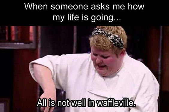When Someone Asks Me How My Life Is Going All Is Not Well In Waffleville Funny Memes Funny Pictures Memes